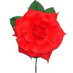 Flor flamenca / 54733