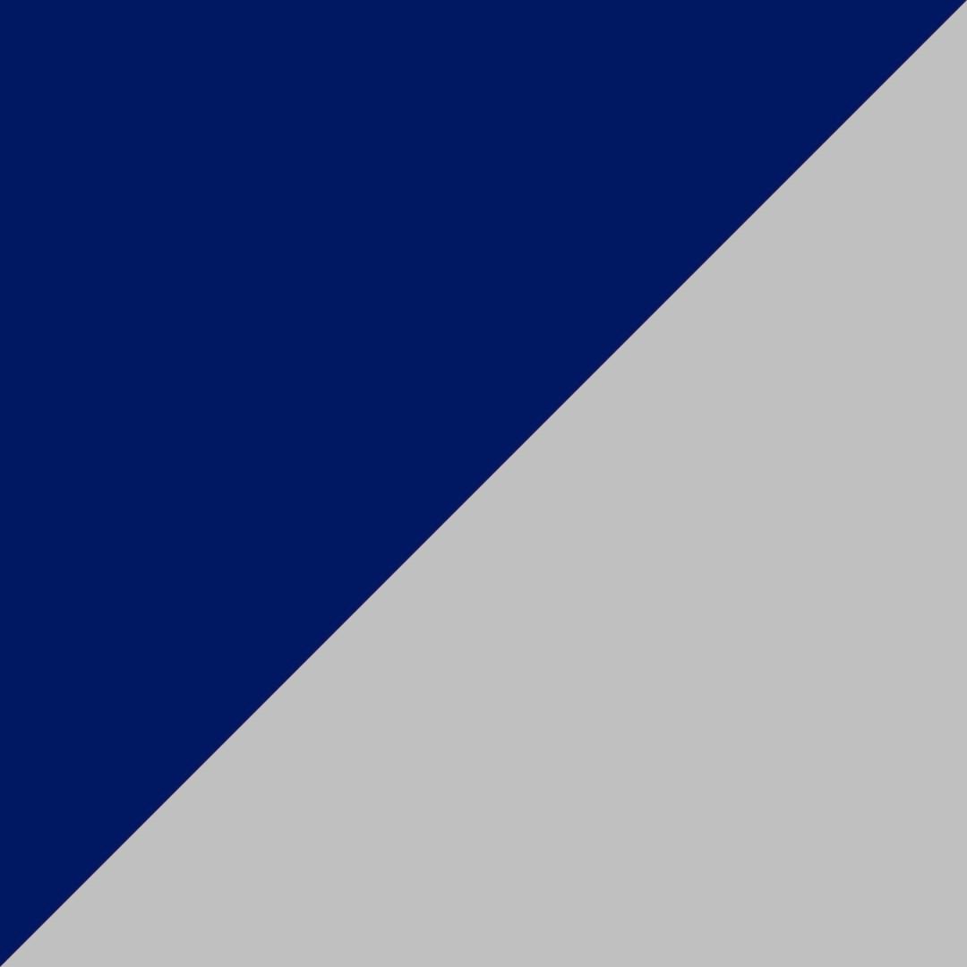 Gris/marino